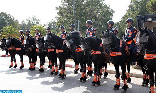 فرسان الأمن الوطني يشاركون في معرض أفينيون للفروسية