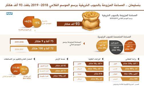 بنسليمان.. المساحة المزروعة بالحبوب الخريفية برسم الموسم الفلاحي 2018- 2019 بلغت 93 ألف هكتار