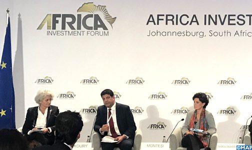 جنوب إفريقيا.. الإشعاع المغربي في قلب إفريقيا الجنوبية