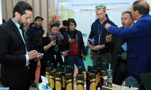 قطاع زيت الزيتون يدر على المغرب ما يعادل 1.8 مليار درهم من العملة الصعبة سنويا