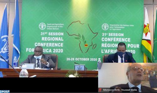 المغرب يلتزم برفع التحديات وتسريع المبادرات من أجل تحقيق الأمن الغذائي في إفريقيا (سفير)