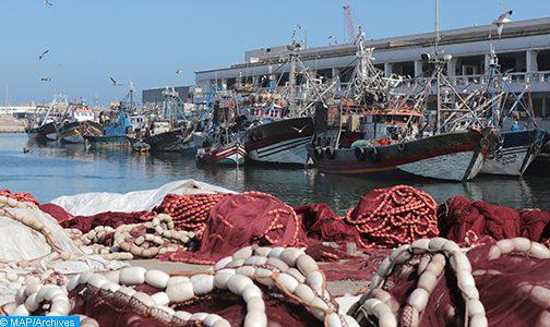 الصيد البحري: المكتب الوطني للصيد يواصل تحسين وعصرنة عملية التسويق
