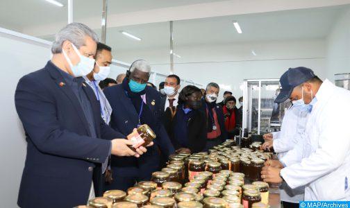 سيدي افني..دورات تكوينية للفلاحين حول تثمين وتسويق منتجات العسل