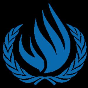 CDH: Le Maroc organise un panel sur les droits économiques, sociaux et culturels
