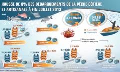 Hausse de 8 % des débarquements de la pêche côtière et artisanale à fin juillet 2013 (ONP)