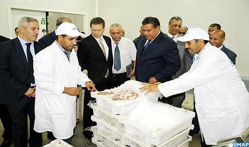 Marrakech se dote d'un marché de gros de poisson ultramoderne