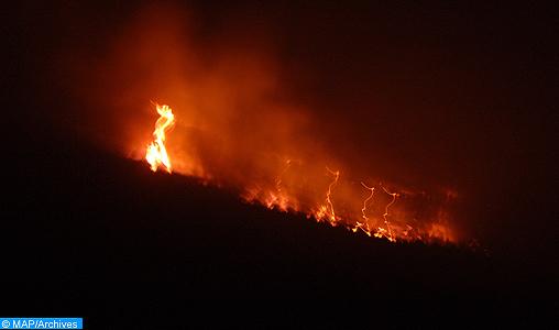 Chefchaouen: environ 150 ha de couvert forestier ravagés par un incendie à Bni Selmane (responsable)