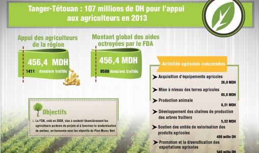 Tanger-Tétouan : 107 millions de DH pour l'appui aux agriculteurs en 2013