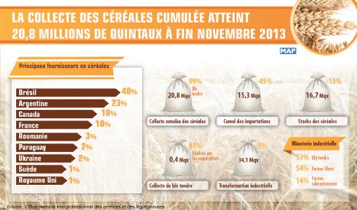 La collecte des céréales cumulée atteint 20,8 millions de quintaux à fin novembre 2013 (ONICL)