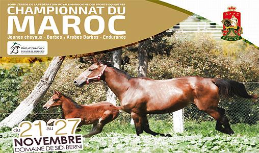 championnat du maroc des jeunes chevaux barbes et arabes barbes et d 39 endurance la 2e dition. Black Bedroom Furniture Sets. Home Design Ideas