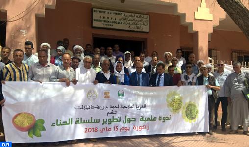 Zagora: Appel à promouvoir les programmes de renforcement des capacités des producteurs du henné