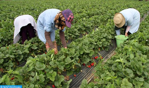 Travailleuses marocaines à Huelva: Le ministère de l'Emploi suit les résultats de l'instruction judiciaire