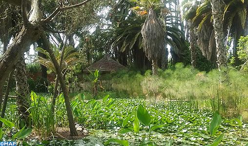 Les Jardins Exotiques De Sidi Bouknadel Un Voyage Des Sens Dans Le