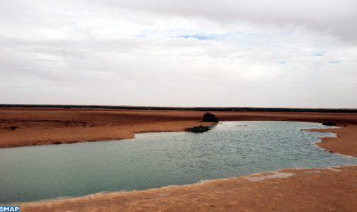 La Sebkha d'Imlily, un site écologique singulier qui reflète la richesse et la diversité naturelle de la région de Dakhla-Oued Eddahab
