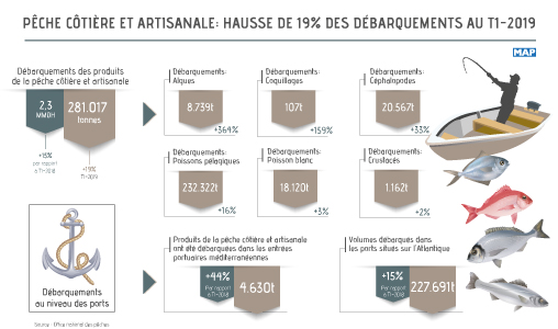 Pêche côtière et artisanale: hausse de 19% des débarquements au T1-2019