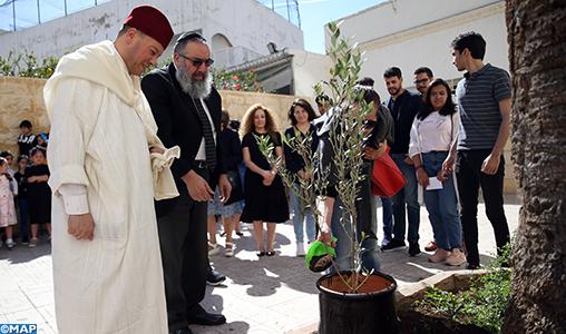 """Casablanca: des jeunes musulmans plantent """"un olivier de la fraternité"""" dans une synagogue, une église et une mosquée"""