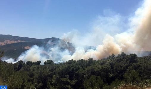 Province de Tétouan : Un incendie dans la forêt d'Aïn Lahcen quasi circonscrit