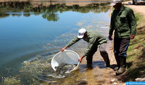 Écotourisme: Iffer et Afourgah, les lacs méconnus du Moyen Atlas
