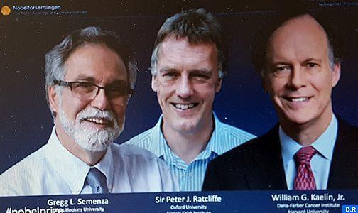La médecine ouvre le bal des Nobel : Deux Américains et un Britannique sacrés (Encadré)