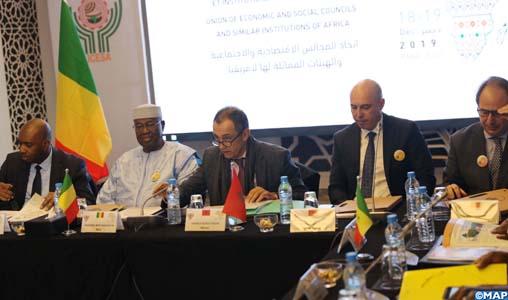 """Développement en Afrique: la contribution des CES revêt une importance """"toute particulière"""""""