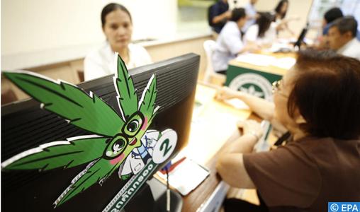 Thaïlande : ouverture d'une clinique de médecine traditionnelle au cannabis