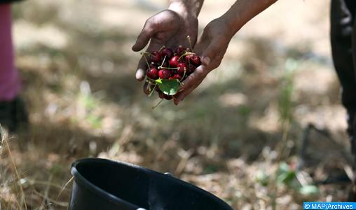 Approvisionnement régulier du marché en différentes denrées alimentaires satisfaisant largement les besoins (communiqué)