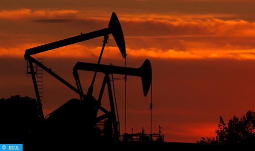 Le président russe charge le gouvernement d'établir des tarifs spéciaux de transport de pétrole pendant la durée de l'accord « OPEP+ »