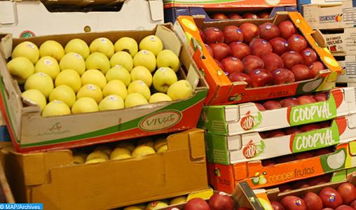 Souss-Massa : Vers un inventaire logistique d'activités de légumes et fruits