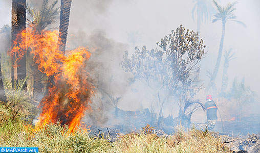 Al Haouz : Le feu de forêt déclaré à l'Ourika maîtrisé