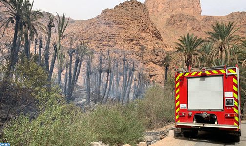 Tiznit: Extinction d'un incendie déclenché à l'Oasis d'Ait mansour