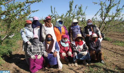 Covid-19 : La Tunisie appelée à repenser son système agricole (BM)