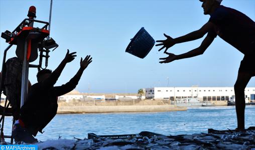 L'INRH accompagne le développement durable de la pêche et de l'aquaculture