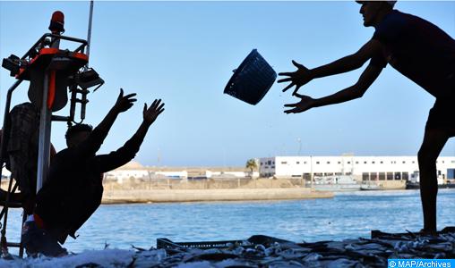 Port d'Essaouira : Les débarquements de la pêche côtière et artisanale en baisse de 55% à fin juin (ONP)