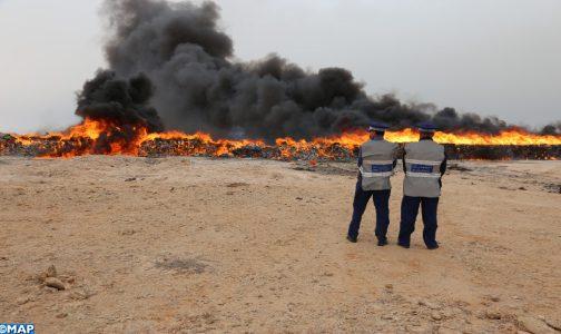 Plus de 5 tonnes de chira incinérées à Dakhla
