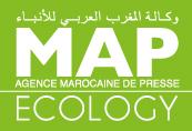 Map ECOLOGY