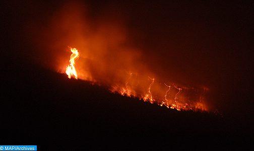 تونس .. اندلاع أزيد من 150 حريقا خلال ال36 ساعة الأخيرة