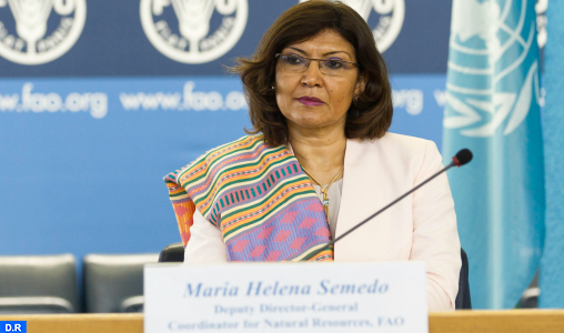 Journée internationale de l'arganier : les efforts du Maroc, source d'inspiration